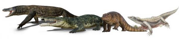 Mega-reptiles of Pleistocene tropical Australia. (V. Konstantinov, A. Atuchin, R. Allen, S. Hocknull. Queensland Museum)