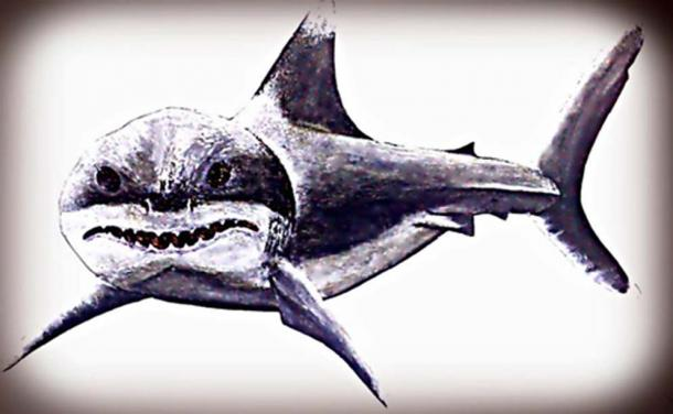 Megalodon ruled the primordial Southern European seas with an iron fin. (Legendz Collective)