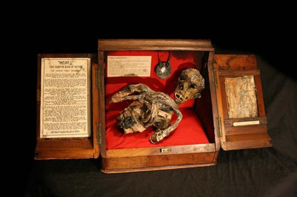 """""""""""Menes"""" the Vampyr King of Egypt – The Demon Child Pharaoh"""" of the museum."""