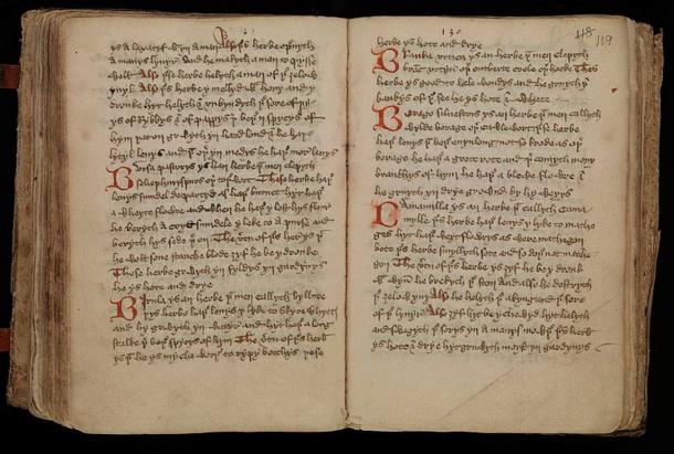 Middle-English leech-book, containing medical receipts, including some charms; a Latin-English Glossary of herbs; short tracts on urines, the cure of wounds, uses of herbs, etc.