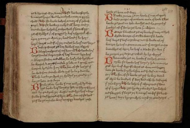 Middle-English leech-book, containing medical receipts, including some charms; a Latin-English Glossary of herbs; short tracts on urines, the cure of wounds, uses of herbs, etc