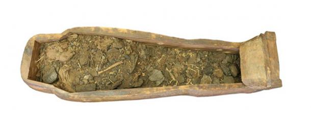 Mixed remains within the coffin.
