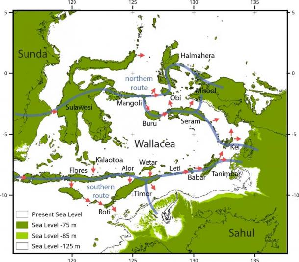 Modelled routes for making landfall in Sahul. Sea levels are shown at -75 m and -85 m. Potential northern and southern routes indicated by blue lines. Red arrows indicate the directions of modelled crossings. Michael Bird