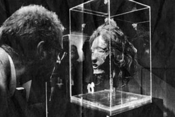 Mokomokai in a museum showcase