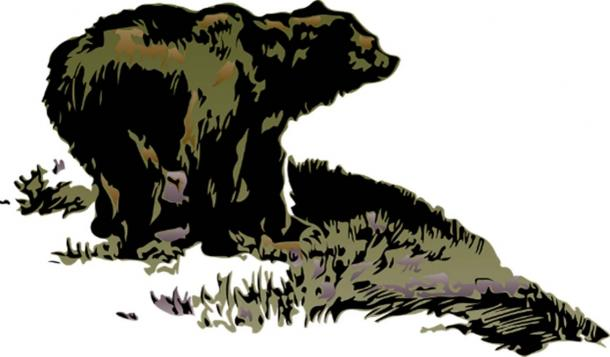 Most Native American stories about the site involve bears.