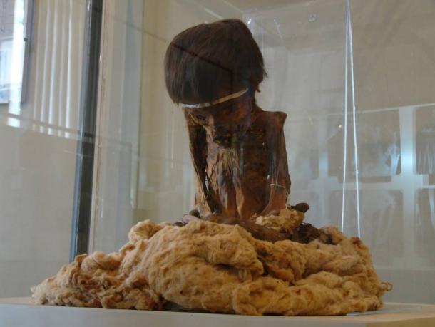 Mummy at Ica Museum, Peru, in the same region as Pacara