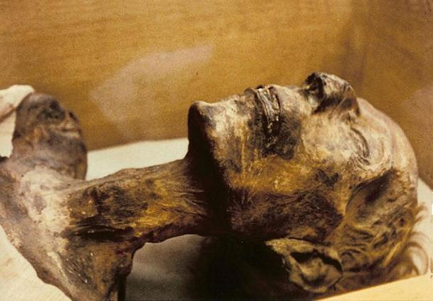 Mummy of 19th dynasty King Rameses II. Note the fair hair color.