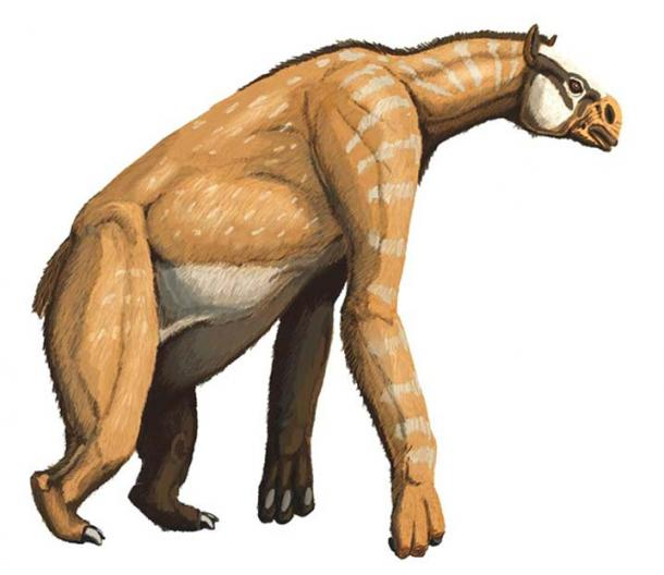 Mungo Man and Mungo Woman lived at the same time as the megafauna of Australia, like this chalicothere Anisodon grande