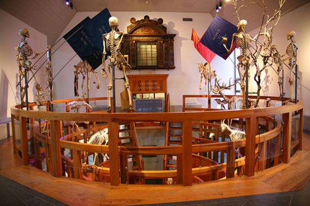 Museum Boerhaave – Anatomisch Theater. Source: CC BY-SA 2.0