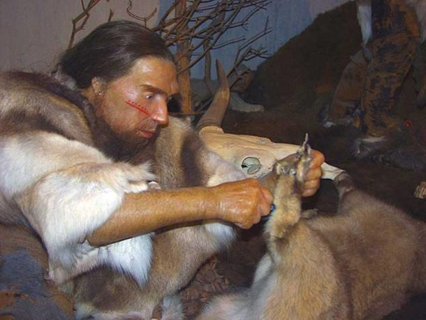 Museum representation of a Neanderthal using a primitive cutting tool.