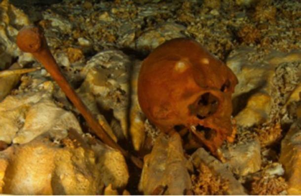 Naia's cranium ( HoyoNegro.org)