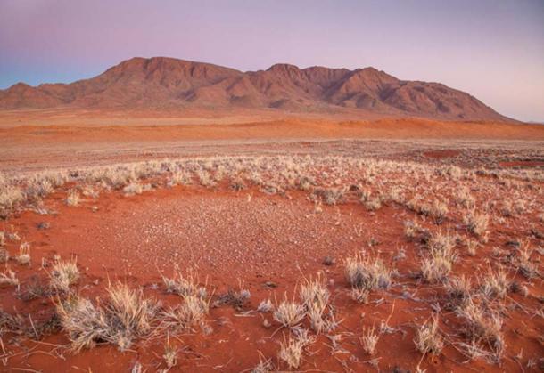A fairy circle in the Namib Desert.