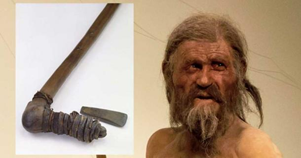 Naturalistic reconstruction of Ötzi ( CC BY-SA 3.0 ) and Ötzi's axe. Credit: © South Tyrol Museum of Archaeology