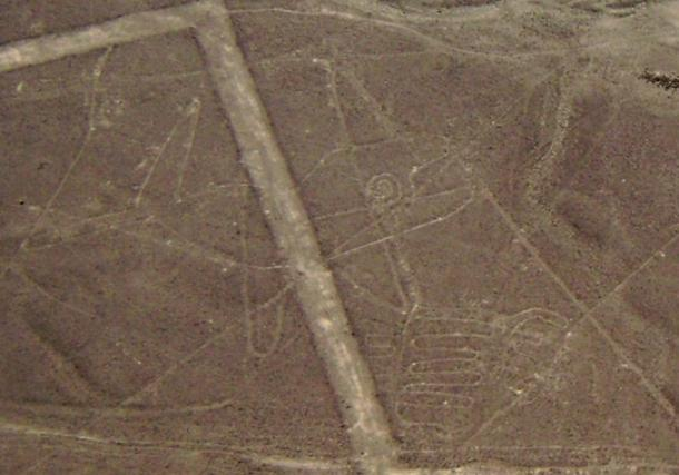 Nazca Lines, Whale.