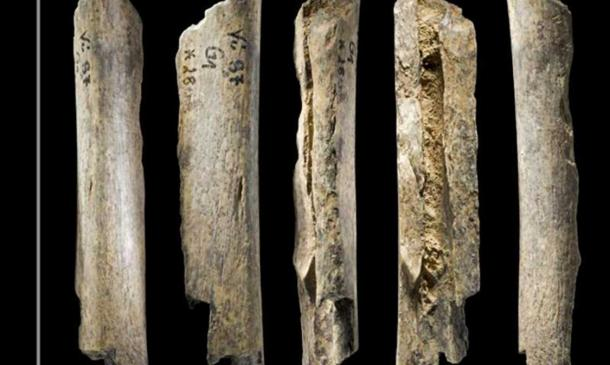 Neanderthal bone found at Vindija Cave, Croatia.