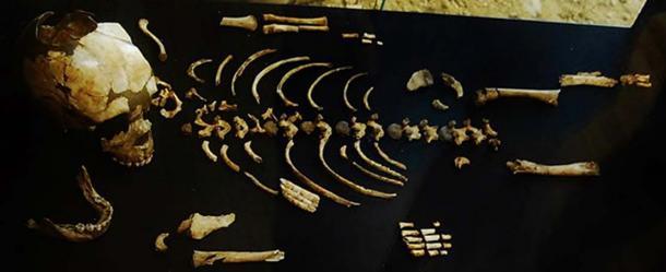 Neanderthal child skeleton found at Roc de Marsal, Dordogne. Musée national de Préhistoire, Les Eyzies-de-Tayac, France.