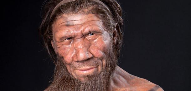 A facial reconstruction of a Neanderthal.