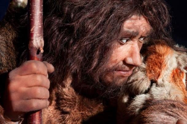 Neanderthal. (procy_ab / Adobe Stock)