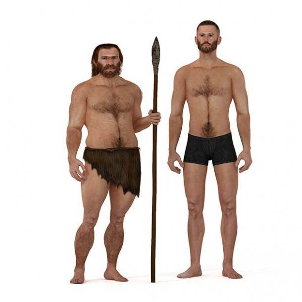 A Neanderthal on the left versus a modern human on the right. We sure look different but below the surface the modern human genome also includes the Neanderthal gene that makes Covid-19 more severe. (nicolasprimola / Adobe Stock)