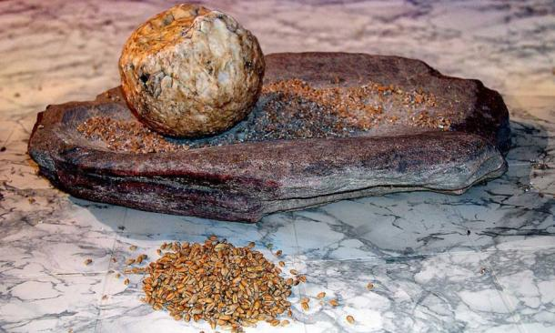 A Neolithic grindstone for processing and grinding grains