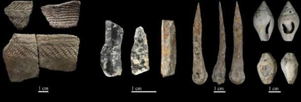 Some of the Neolithic remains found in Cova Bonica Vallirana, Barcelona.