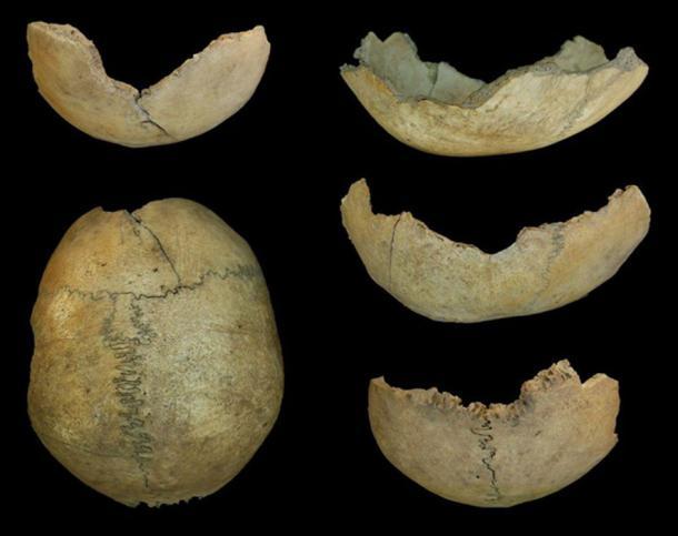 Neolithic skull cup from Cueva de El Toro, Spain. (Dr. Jonathan Santana-Cabrera / Durham University)