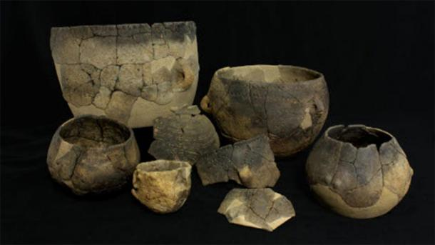 Neolithic pottery fragments that were analyzed in the study. (Annabelle Cocollos / Conseil départemental du Calvados)