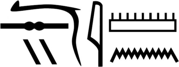 Nesyamun's name in hieroglyphs as shown in his coffin inscriptions. (Scientific Reports)