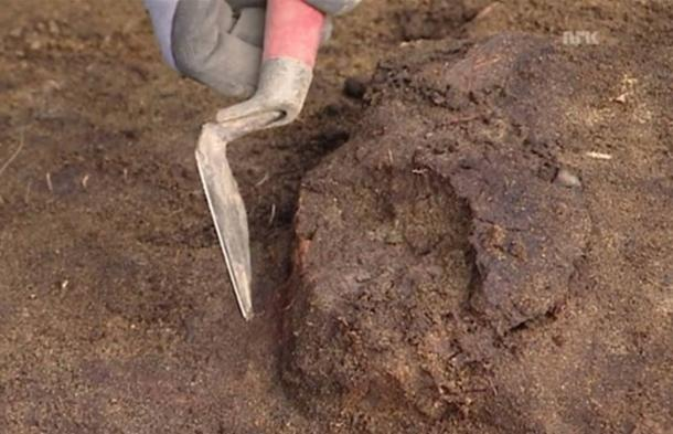Norwegian archaeologists find 8,000-year-old skull.