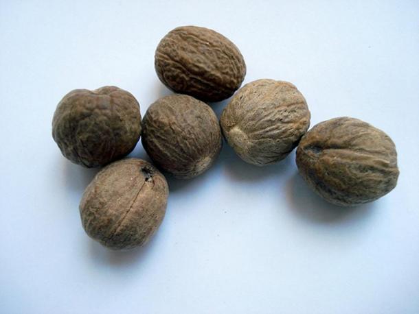 Nutmeg (Images via Liza Knox.)