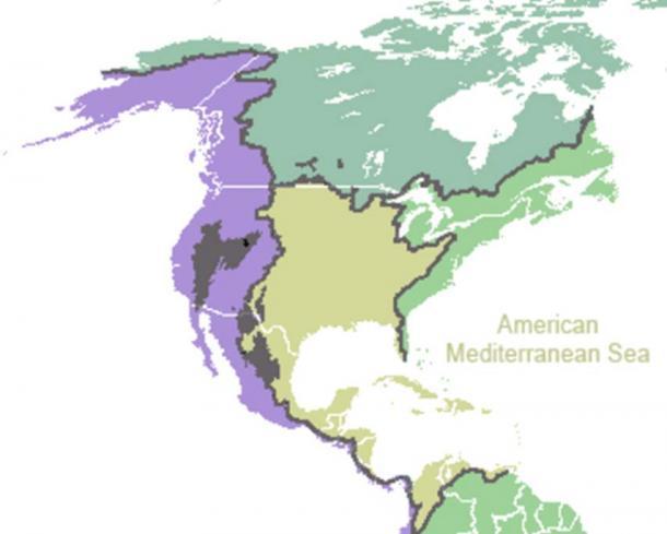 Ocean drainage at the American Mediterranean Sea