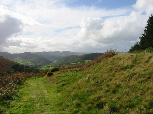 Looking along Offa's Dyke, near Knill, Herefordshire.