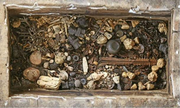 Offering of mollusks and other gifts at Templo Mayor, Mexico. Ancient divers plunged to approximately 15 meters (49 feet) to get some of these treasures.