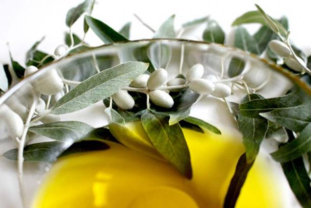 Olive oil has been utilized for over 5,000 years (public domain)