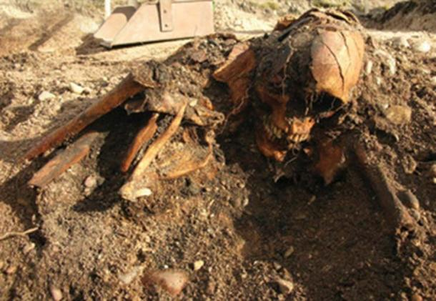 One of the skeletons found aboard the smaller ship. Credit: Marge Konsa, University of Tartu