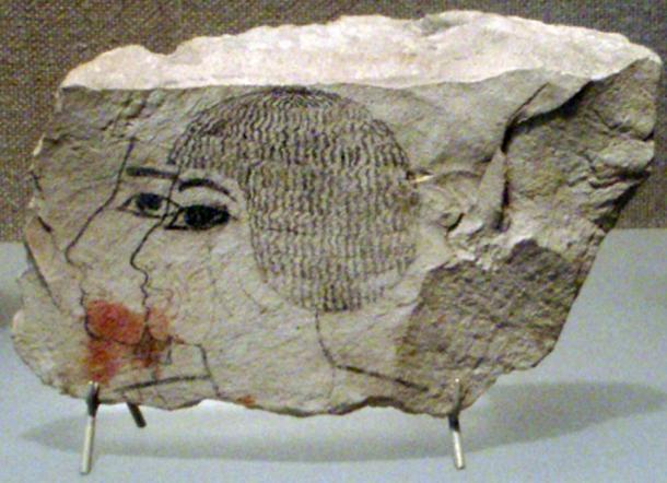 Ostracon found from the dump below Senenmut's tomb's chapel (SAE 71).
