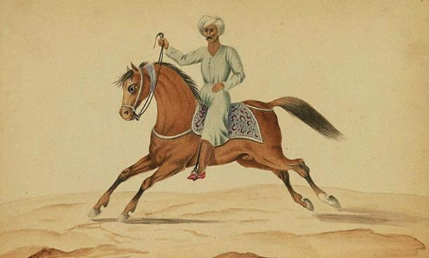 Image from an Ottoman copy of a book on horses and horse training, Walters Art Museum.