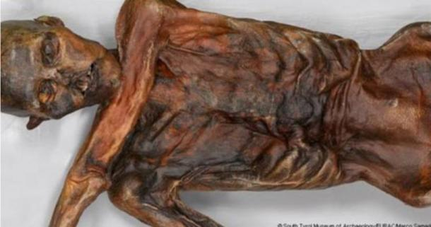 Otzi the iceman. Credit: South Tyrol Museum of Archaeology