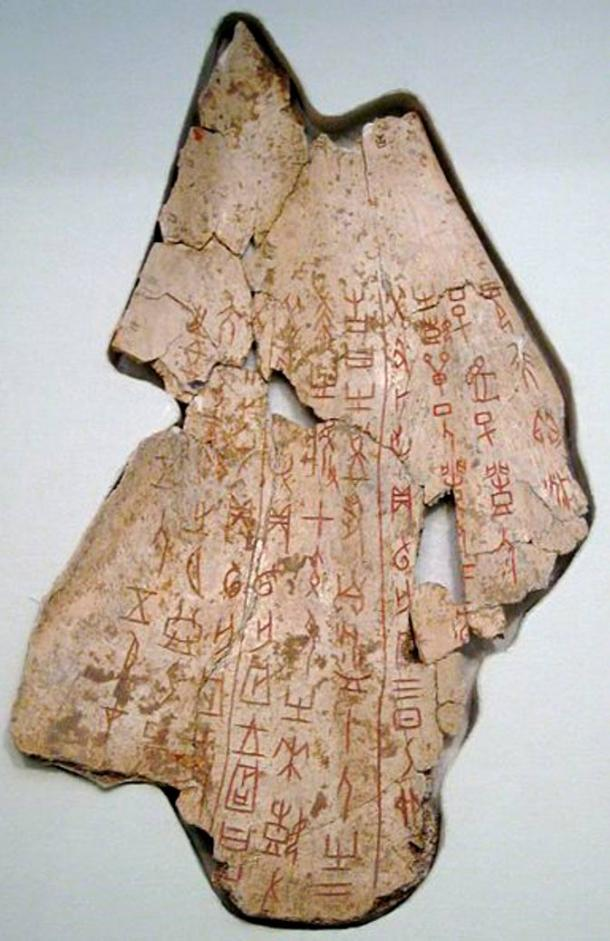 Ox scapula oracle bone from the reign of King Wu Ding (late Shang dynasty) found in Anyang, Henan Province, China