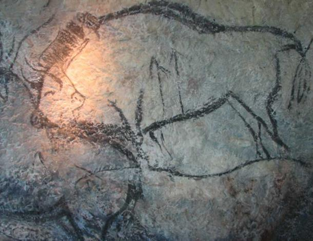 """Painting of bison in the """"Salon Noir"""" of the Cave of Niaux"""