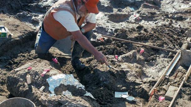 Paleontologist Don Swanson helps excavate a site near San Diego, California, that may show that early humans were present in the Americas 130,000 years ago.