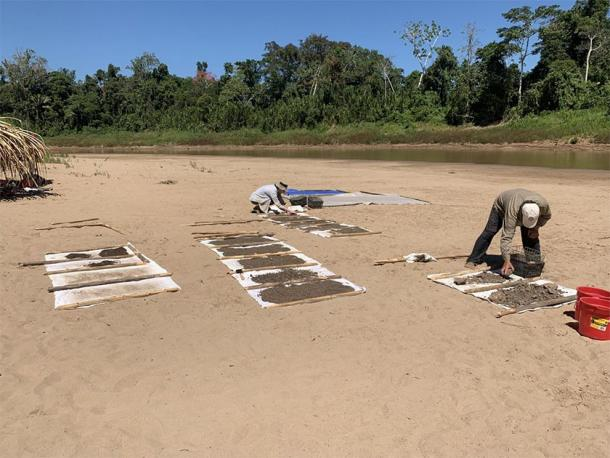 Paleontologists dry sediment collected from the Santa Rosa site where Ucayalipithecus was found, in Amazonian Perú. (Erik Seiffert)