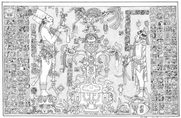 Panel Temple of the Foliated Cross. Linda Schele Drawing. Courtesy of Ancient Americas at LACMA