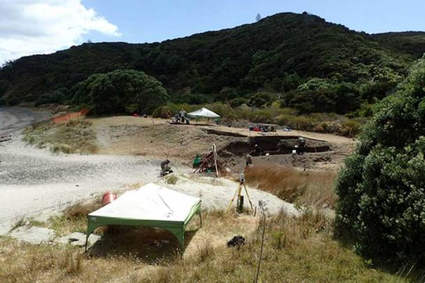 Part of the excavation area along the northern side of a seasonal unnamed stream, Mangahawea Bay