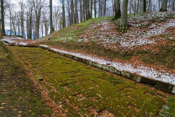 Paved Dacian road in Sarmizegetusa, the capital of the Dacian Empire, Romania (Calin/ Adobe Stock)