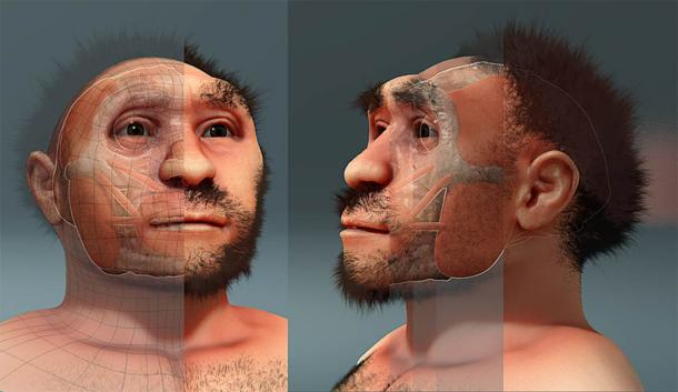A reconstruction of Peking Man or Homo erectus pekinensis, a specimens of Homo erectus found in China dating from roughly 750,000 years ago. (Cicero Moraes / Public domain)