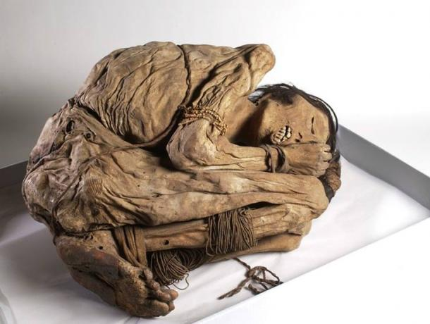 A mummified Peruvian male, who was buried in a bundle. Wellcome Images/Wikimedia, CC BY
