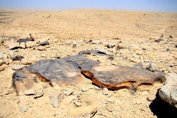Petroglyphs in the Negev desert. (Igor Svobodin/Flickr)