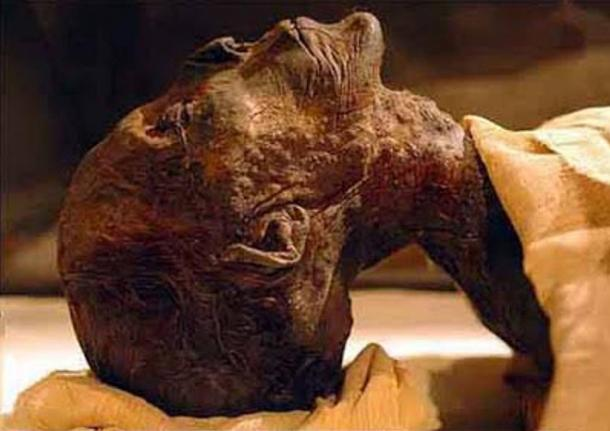 Remains of Pharaoh Queen Hatshepsut Identified (28/05/07): A DNA test of a single tooth was key to solving one of the greatest mysteries of ancient Egypt.