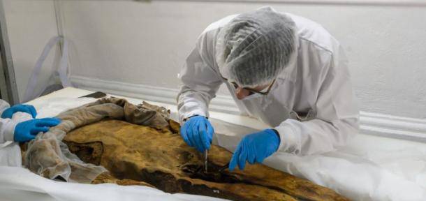 Philippe Charlier has taken skin samples to examine in Europe. (John Guevara / EL TELÉGRAFO)